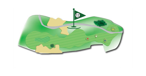 Details of the hole 12