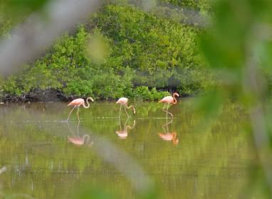 Atractivos en Кайо-Коко: Постоялый двор «Ла Силья»