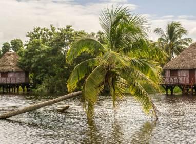 Atractivos en Cienfuegos: Ferienanlage Guamá (Ciénaga de Zapata)