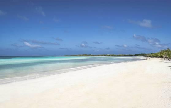Пляж «Фламинго»