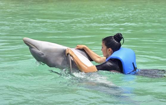 Aquarium pour dauphins à Cayo Santa María