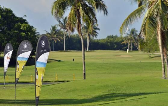 Golf: Terrain de golf