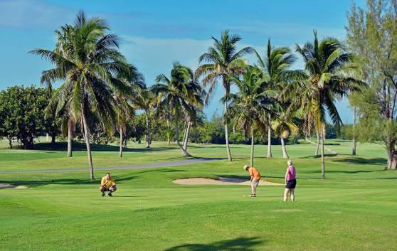 Meliá Marina Varadero Hotel - Golf