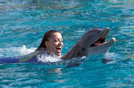 SPECIAL SWIMMING WITH DOLPHINS