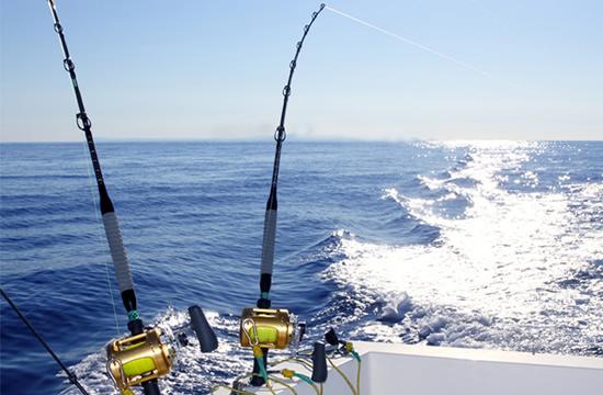 EXCLUSIVE SEAFARI + FISHING